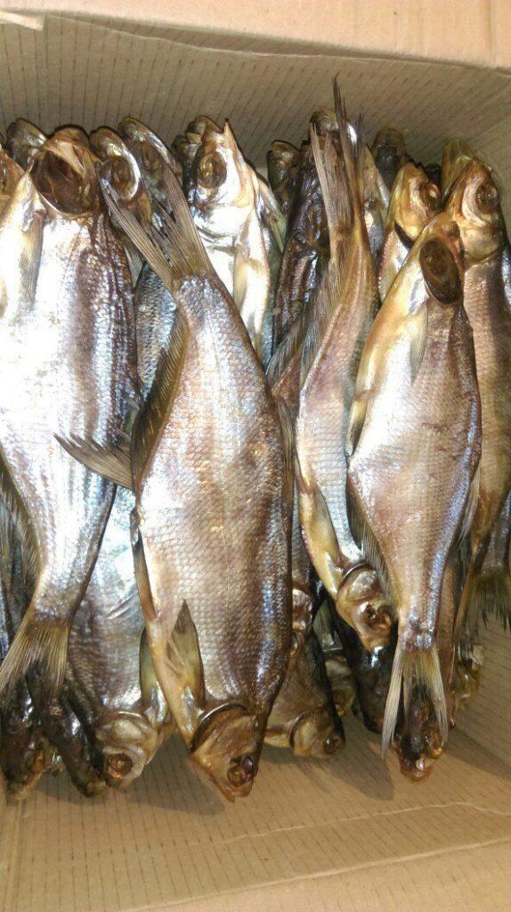 ивановская рыболовная барахолка
